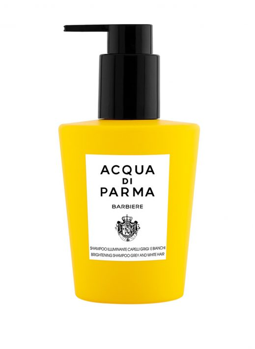 Acqua Di Parma Barbiere Brightening Shampoo for White and Grey Hair 200 ml